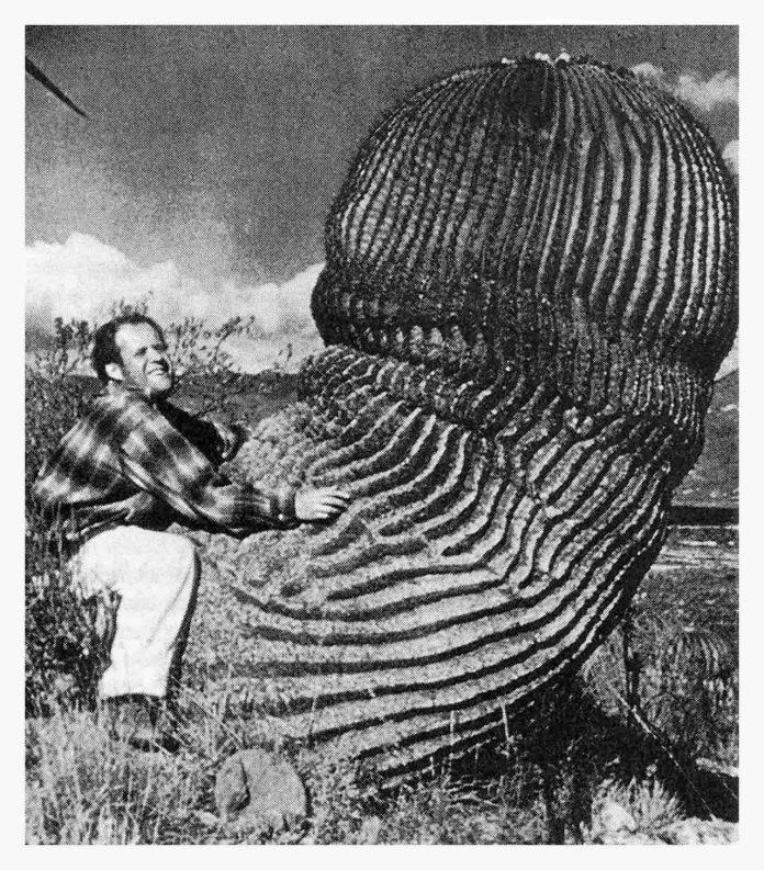 Eisenstein cactus 2